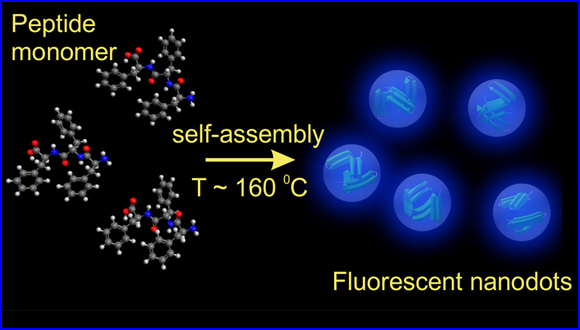 Single Fluorescent Peptide Nanodots